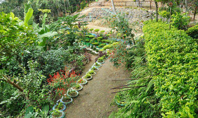 Parque-Ecológico-do-Vidigal-fotos-Mariana-Reis-post-3