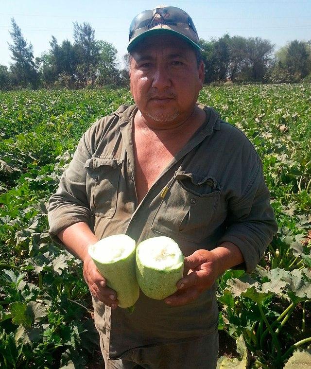 Dilmar sostiene en sus manos el resultado de la cosecha biofertilizada con Worms. (Foto: Worms Argentina)